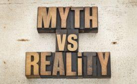 mold myths