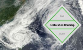 restoration roundup