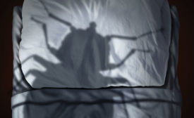 Bed bug remediation