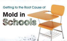 Getting to the Root Cause of Mold in Schools
