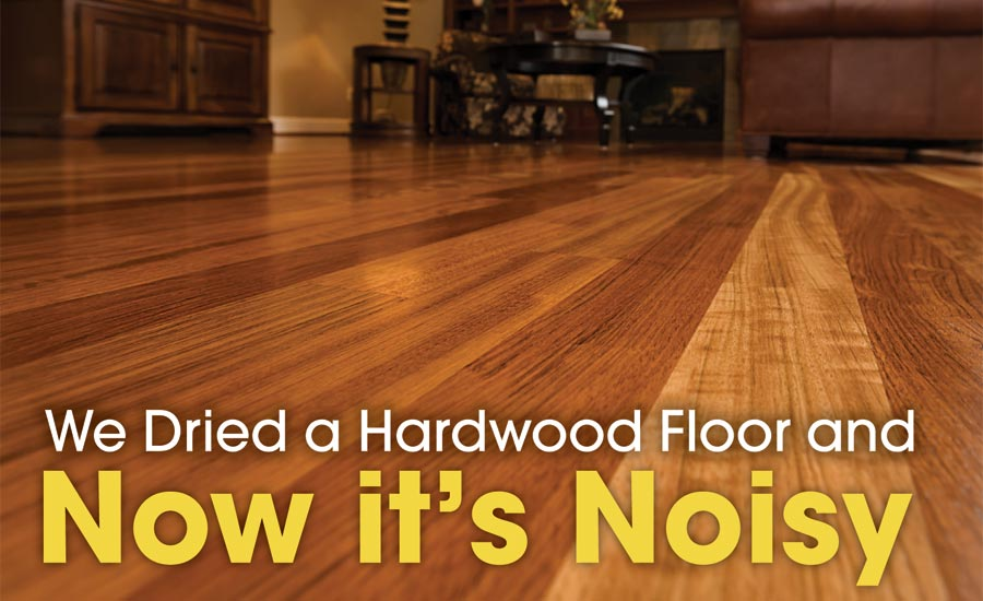 We Dried A Hardwood Floor And Now Its Noisy 2017 11 16