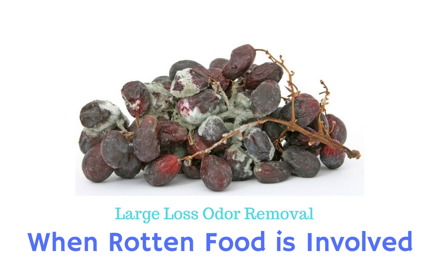 Large Loss Odor Removal: When Rotten Food is Involved