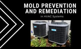 HVAC mold