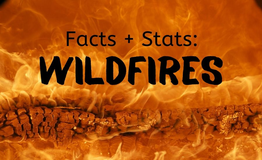 wildfire facts