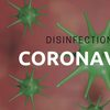 coronavirus disinfection licker