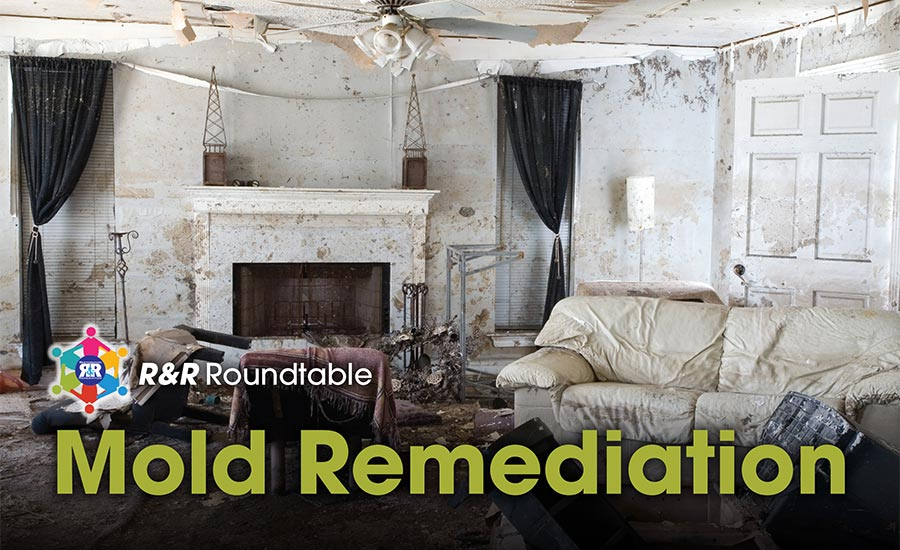 Round Table Mold Remediation