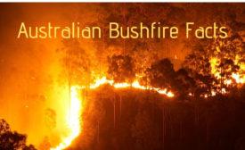 aussie bushfires 2