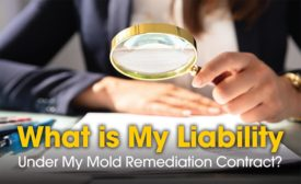 mold remediation contract