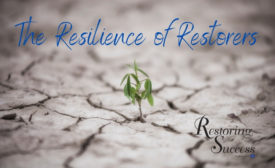 restoring success resilience