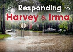 Responding to Harvey