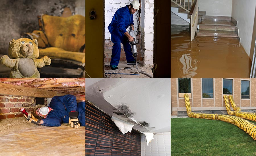 Water Fire and Mold Restoration Technician