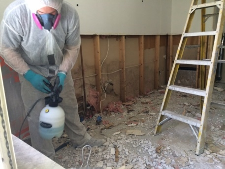 Project #7: Pro Bono Mold Abatement