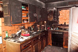 PD_fire damage