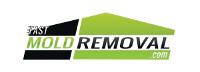 fast mold removal logo black green