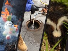 removing odors from smoke, sewage and skunk
